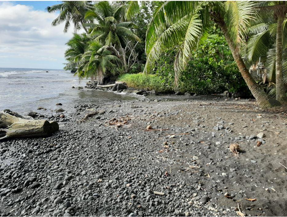 Mission D'assistance à Maîtrise D'ouvrage Pour Les Travaux De Rectification De L'exutoire De La Rivière Vairaa (Tahiti), Pk 23.21 à Hitiaa O Tera